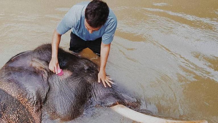 Hamish Daud terlihat sedang asyik memandikan seekor gajah di sungai.