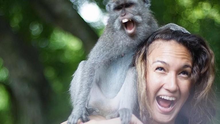 Nadine Chandrawinata terlihat foto bersama seekor monyet di pundaknya.