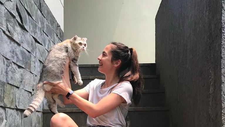 Pevita Pearce juga dikenal sebagai penyayang kucing. Ia memiiki dua kucing yang diberi nama Jojo dan Kecil. Kedua kucingnya ini juga memiliki Instagram khusus. Ia pun sering mengabadikan momen bersama kucing kesayangannya.