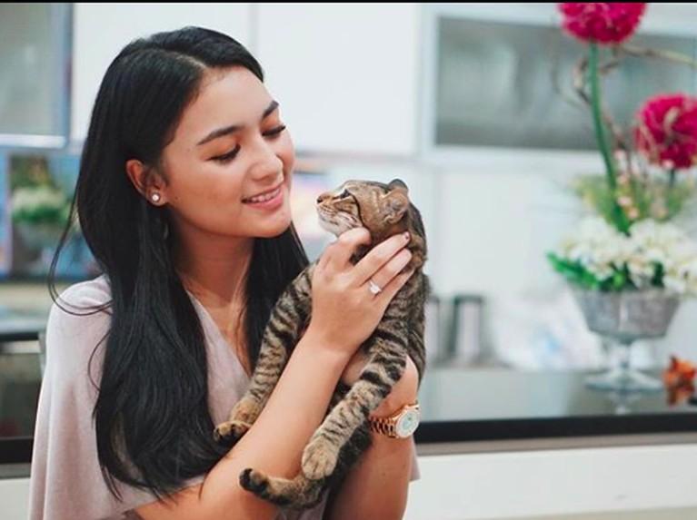 Pesinetron Citra Kirana juga seorang pecinta kucing, ia sering mengunggah foto kucing kesayangannya itu di laman Instagram miliknya.