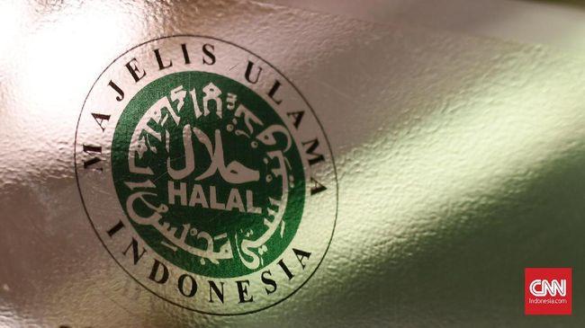 Ketua Komisi Fatwa Majelis Ulama Indonesia (MUI) Hasanuddin Abdul Fatah ingin ketua periode 2020-2025 benar-benar independen.