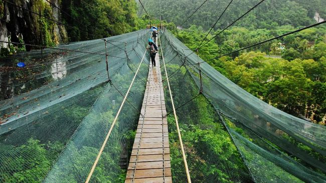 Empat taman nasional di Indonesia telah masuk daftar ini, yakni; TN Gunung Leuser, TN Kerinci, TN Lorentz, dan TN Way Kambas.