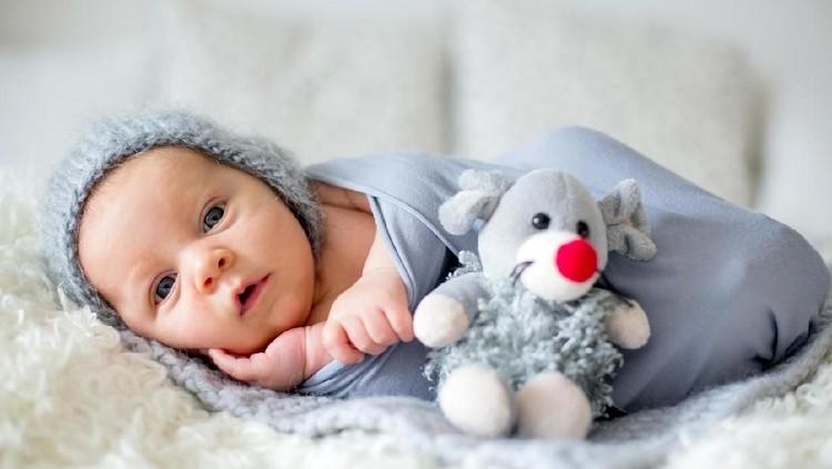 Sweet newborn baby sleeps in a basket. Beautiful newborn boy with bear toy.
