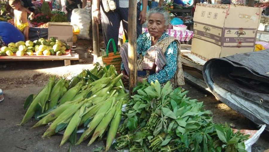 Kisah Sukses Ibu Penjual Sayur Didik Anak Hingga Jadi Bupati