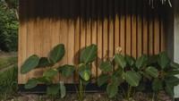 <p>Penginapan milik Nicholas Saputra diberi nama Terario Tangkahan. Dalam penjelasannya, penginapan tersebut dikelilingi oleh hutan dan merupakan lokasi untuk mengawalipetualanganmenuju hutan hujan Sumatera. (Foto: Instagram @terrariotangkahan)</p>