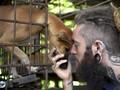 Jagal Gelap Daging Anjing Kamboja dan 'Hantu' Rabies