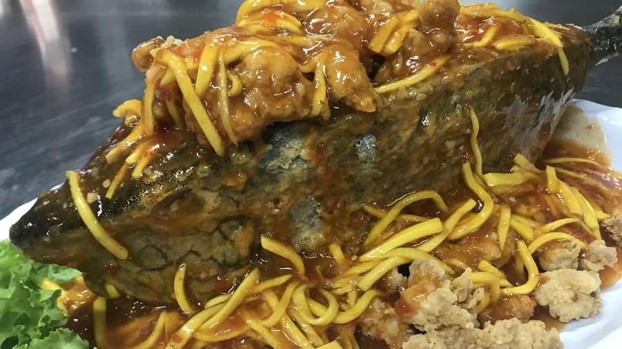 Nikmatnya Kerang Macan Balado dan Pizza Topping Tongseng