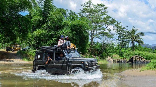 Selain keindahan hutan dan pantai, Taman Nasional Meru Betiri juga dianugerahi habitat kawanan Penyu Belimbing yang imut.