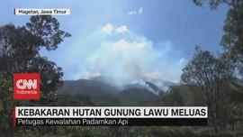 VIDEO: Kebakaran Hutan Gunung Lawu Meluas, Petugas Kewalahan