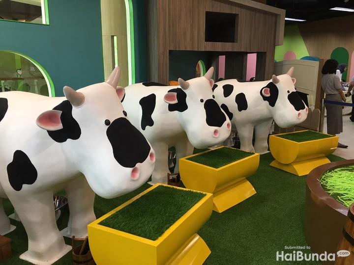 <p>Begitu masuk, anak akan berjumpa dengan field pertama yaitu Cow Barn alias peternakan sapi. Di sini anak-anak akan diberi edukasi cara merawat sapi dan bagaimana susu diperoleh.</p>