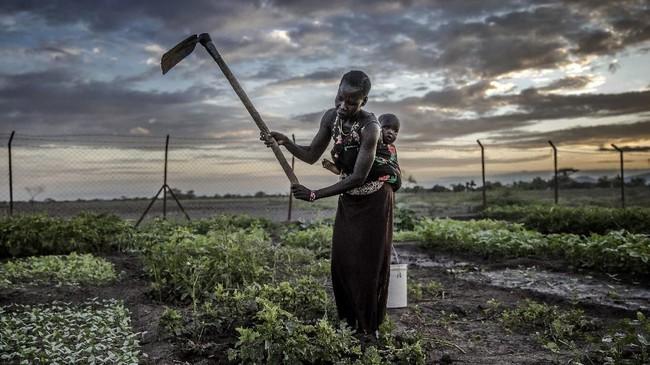 Pengungsi di Turkana, Kenya, Afrika, berhadapan dengan perubahan iklim. Namun di tengah himpitan cuaca ekstrem dan situasi serba minim, mereka bertahan hidup.