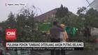 VIDEO: Puluhan Pohon Tumbang Diterjang Angin Puting Beliung