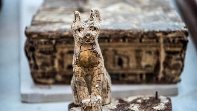 Tim peneliti menemukan mumi hewan-hewan yang tak biasa. Temuan baru tim arkeologi Mesir ini dipamerkan di Saqqara necropolis Giza, Kairo, November 2019.