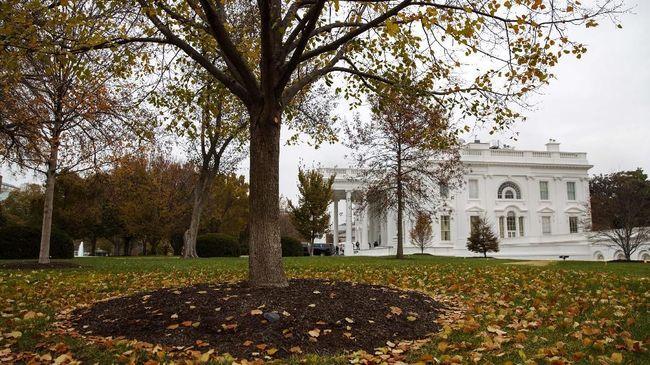 Kantor Kepresidenan Amerika Serikat, Gedung Putih, memecat lima pegawai mereka karena mengonsumsi narkoba jenis ganja.