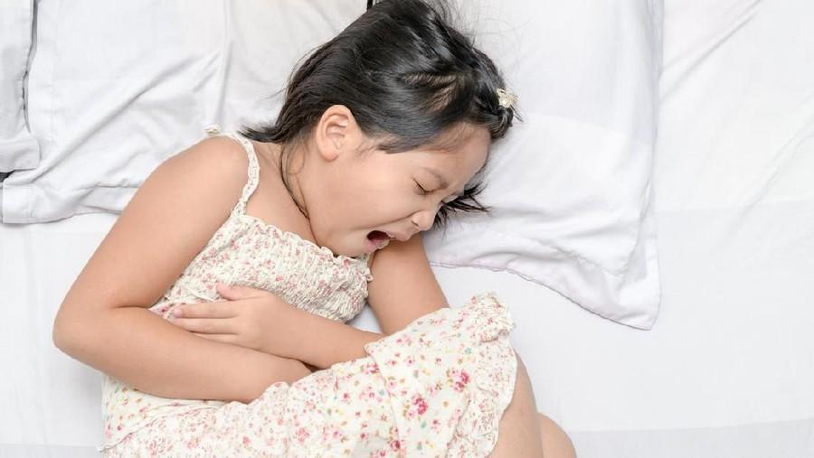 Cara Mengatasi Anak Susah Makan karena Sakit Perut