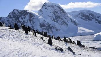 Lubang Ozon di Kutub Selatan Kini Lebih Besar dari Antarktika