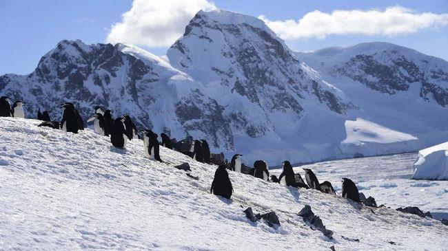 Selain lebih besar dari Antarktika, lubang ozon di kutub selatan juga disebut ahli kini bertahan paling lama.