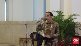 Jokowi Akan Minta BPDP Kejar Peremajaan Sawit 500 Ribu Ha