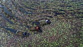 Foto-foto unik pilihan CNNIndonesia.com pada pekan ini berisi di antaranya soal mobil pasir di Argentina hingga buaya raksasa di Amerika Serikat.
