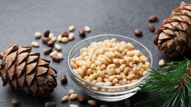 Kacang pinus memiliki banyak manfaat untuk kesehatan, mulai dari menguatkan tulang hingga mencegah penyakit jantung.