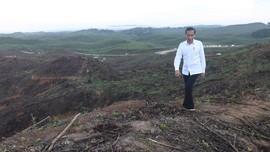 Jokowi Kasih Arsitek 'Kerjaan' di Badan Otorita Ibu Kota Baru