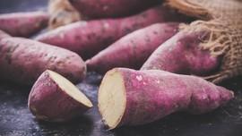 7 Makanan untuk Meningkatkan Kesuburan, Alpukat sampai Ubi
