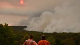 10 Ribu Hektare Lahan Terbakar di Los Angeles