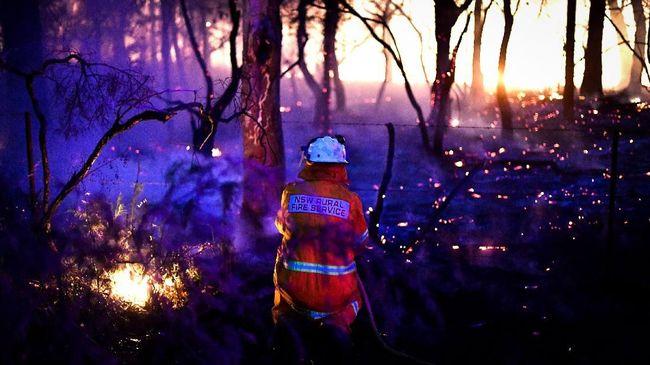 Seorang pemadam kebakaran dinyatakan tewas saat bertugas memadamkan api yang terus berkobar sejak November 2019 lalu. Korban kebakaran kini menjadi 28 orang.