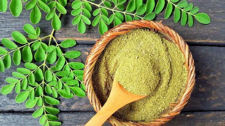 Bunda tahu daun kelor? Tanaman dengan nama lain moringa ini cocok banget dimanfaatkan sebagai bahan alami untuk menyehatkan dan mempercantik kulit.