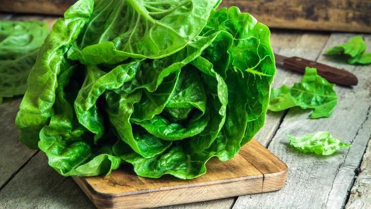 sayuran hijau yang paling sehat
