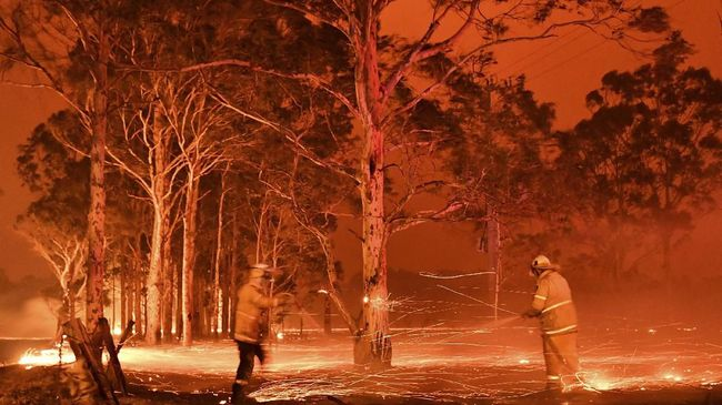 This timed-exposure image shows firefighters hosing down trees as they battle against bushfires around the town of Nowra in the Australian state of New South Wales on December 31, 2019. - Thousands of holidaymakers and locals were forced to flee to beaches in fire-ravaged southeast Australia on December 31, as blazes ripped through popular tourist areas leaving no escape by land. (Photo by Saeed KHAN / AFP)