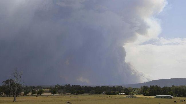 Asap kebakaran hutan di Australia mencapai Selandia Baru dan membuat lapisan es di dataran tinggi berubah warna.