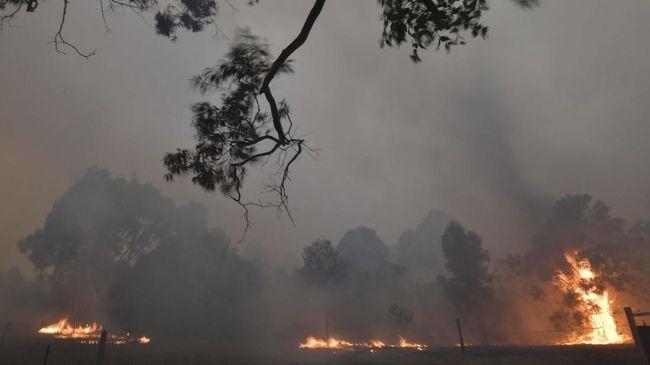 Sebuah pesawat pemadam api dilaporkan jatuh dan hilang di sisi selatan negara bagian New South Wales, Australia pada Kamis (23/1).