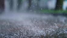 BPBD DKI Ingatkan Potensi Hujan Angin Dua Hari ke Depan