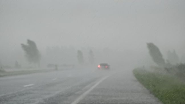 Bibit siklon tropis 94W disebut akan berdampak berupa hujan lebat yang disertai petir dan angin kencang dalam 24 jam ke depan di wilayah RI.