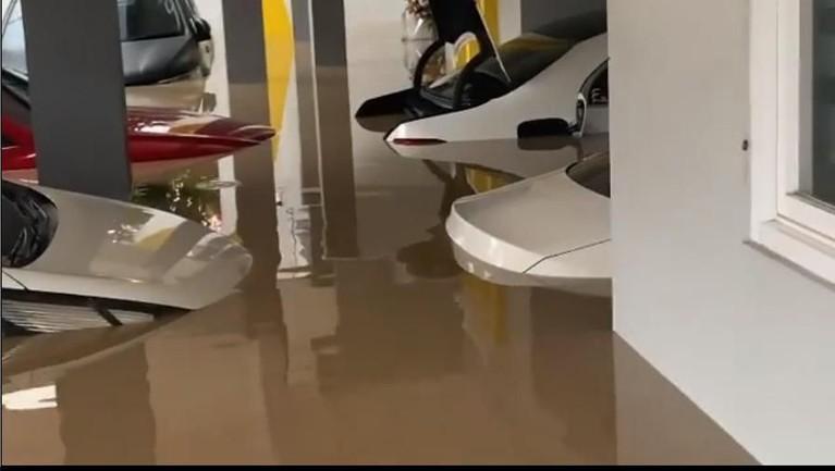 Rumah komedian Parto juga terkena dampak banjir. Hal ini terlihat dari akun Instagram istri Parto, Diena Risty. Ia mengunggah video yang memperlihatkan kondisi rumahnya yang banjir. Terlihat mobil-mobil yang parkir di garasi terendam banjir.