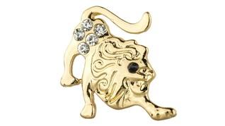 Ramalan Kartu Tarot Zodiak Leo 2020