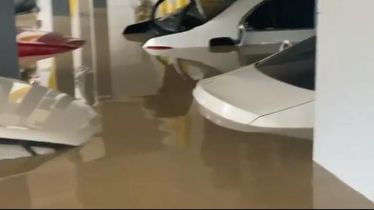 Sekitar sekitar delapan mobil di kediaman Parto terendam banjir. Mulai yang terparkir di depan pintu gerbang hingga yang parkir di samping. Terdapat beberapa mobil berwarna putih yang diparkir berjejer dan terkena banjir.