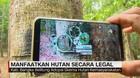 VIDEO: Manfaatkan Hutan Secara Legal (4/5)