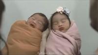 <p>Adik Raffi Ahmad ini melahirkan sepasang bayi kembar. Bayi mereka berjenis kelamin laki-laki dan perempuan. (Foto: Instagram @ritchieismail)</p>