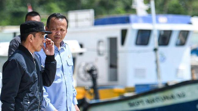 Partai Gerindra meminta maaf kepada seluruh jajaran pemerintahan Joko Widodo atas kasus ekspor benih lobster yang menjerat Edhy Prabowo.