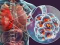 Dokter Paru: Imun Kuat Kunci Cegah Pneumonia Wuhan