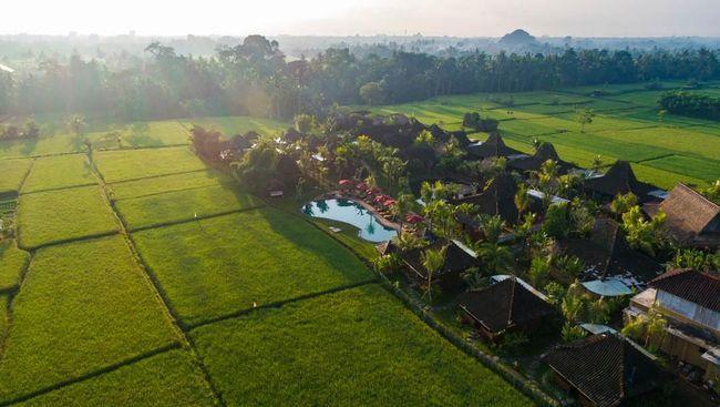 Menikmati ketenangan dan keindahan Ubud tak melulu harus bermalam di hotel bertarif belasan juta.