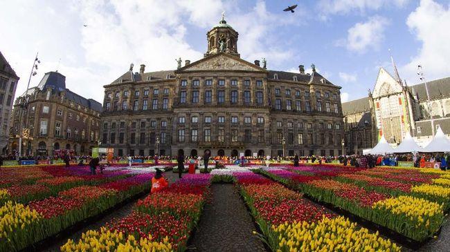 Amsterdam Dikepung Ratusan Ribu Bunga Tulip