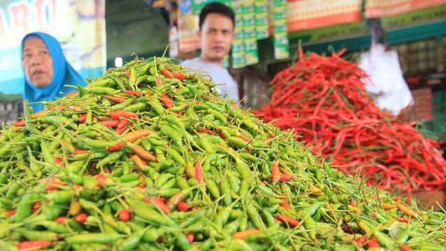 Kementan menyebut usai musim panen Desember-Januari, petani enggan menanam cabai karena harga anjlok. Kondisi ini diperparah dengan musim hujan.
