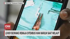 VIDEO: Leher Seorang Remaja Ditembus Ikan Marlin Saat Melaut