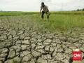 BMKG: Kekeringan Landa Sejumlah Wilayah 20 Hari ke Depan