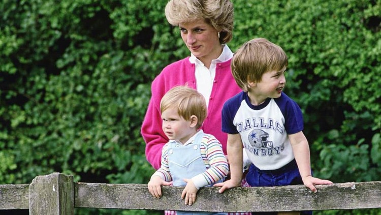 Eks Kepala Staf Putri Diana Buka Suara soal Harry Mundur dari Kerajaan