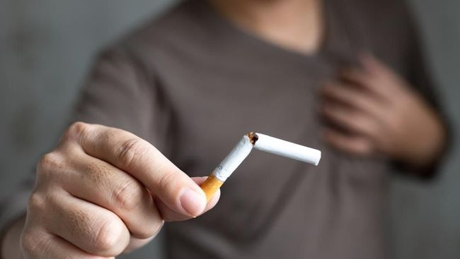 Sebenarnya ada banyak manfaat berhenti merokok, tanpa Anda sadari. Salah satunya berhubungan dengan imunitas tubuh.