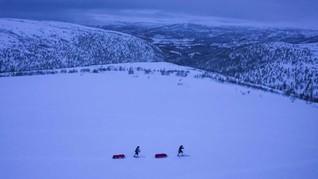 Oasis di Arktika Diprediksi Hilang Akibat Perubahan Iklim